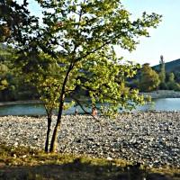 Tanka Poems, nature poems