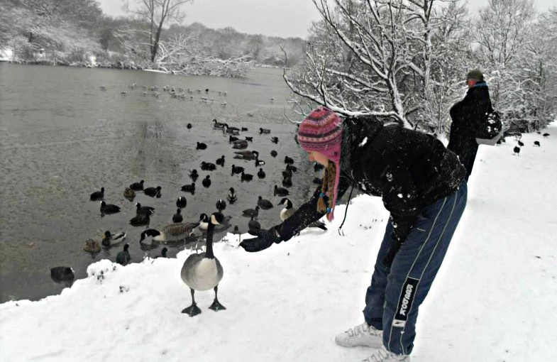 5 w poem about winter
