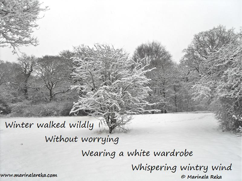 Alliteration Poems Winter Short Poems Quotes